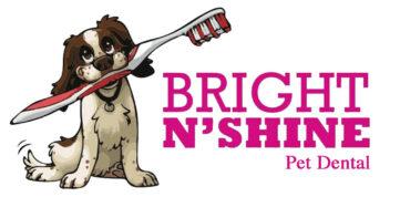 BrightNShine